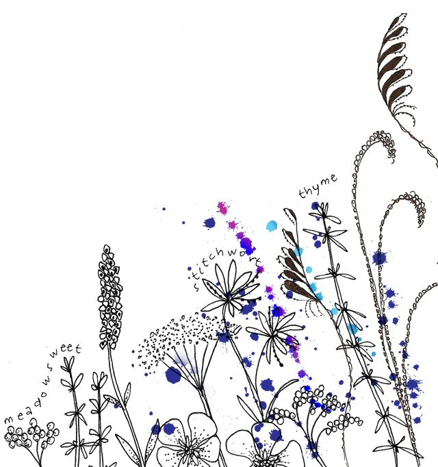 Wildflower Line Drawing : Wildflowers sketch imgkid the image kid has it